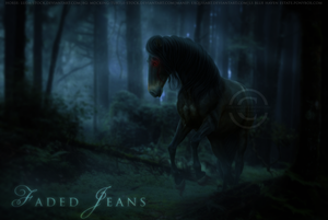 Faded Jeans by Ellessy