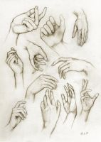 hand study by Lintsi