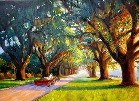 Crooked Oaks Tree Canopy by Flaven