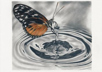 Butterfly meets water drop by kad-portraits