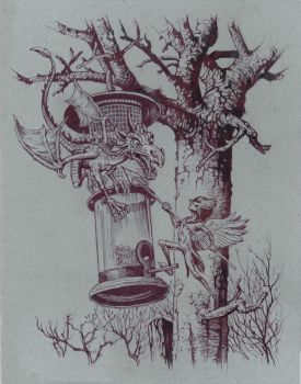 The Bird Feeder by JohnPatience