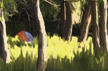 Campground by 37anonymous