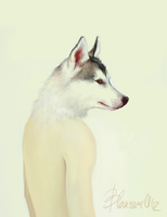 Wolf by Blakravell