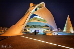 City of Arts and Science 8 by Nightline