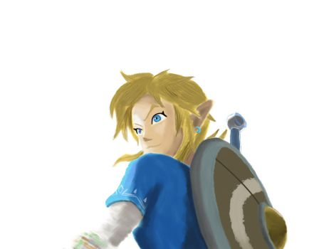 Link Breath of the Wild by Lecyk