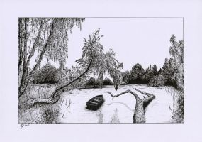 Pond Landscape (Scan) by StephanoAnt