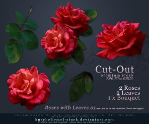 Roses with Leaves 01 Cut Out by kuschelirmel-stock