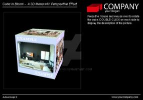 3dcube Flash With Actionscript 3 by tobyng