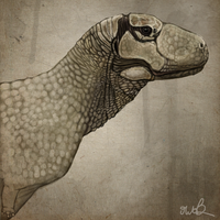 Aucasaurus for Antediluvian Salad by KirbyniferousRegret