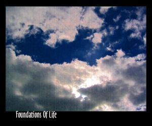 foundations of life by Nimril
