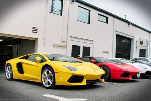 Aventador Friends by SeanTheCarSpotter