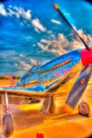 Wings of Freedom Tour Planes - Betty Jane by tjohare