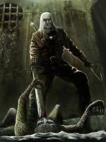 The Witcher by Afternoon63
