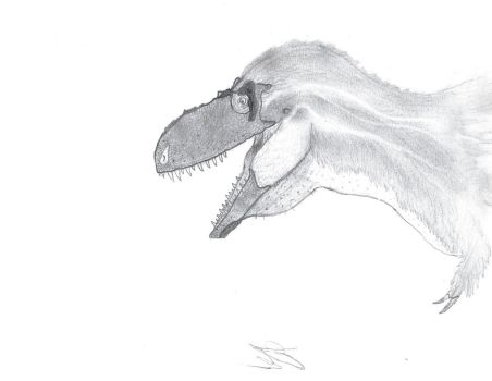 the new face of tyrannosaurs by theropodrex