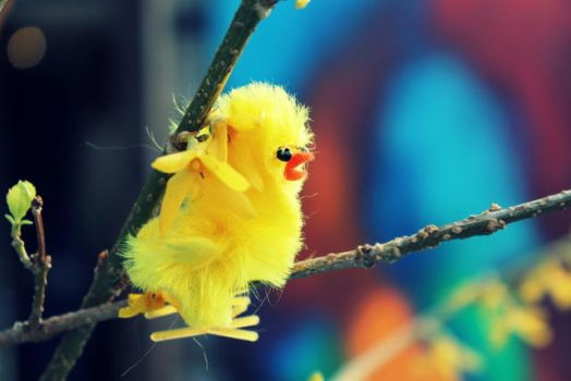 little yellow by Sarah-on-Deviantart
