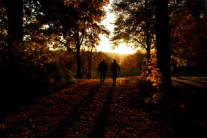 Autumn Sundown and Love by LoveForDetails