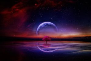 the planet by cannphoto