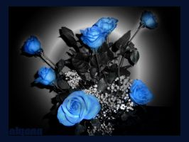 blue roses by olyana