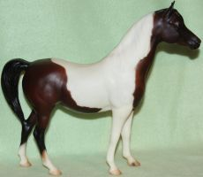 BreYer PAM - Karma Gypsy - Stock by Lovely-DreamCatcher