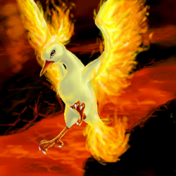 Moltres by Mewitti