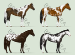 Equine Adoptables [CLOSED] by brynora