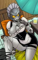 ROBOT MAIDEN by kayzer