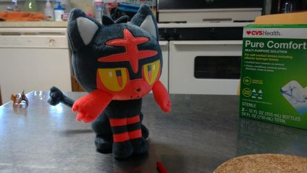 My Litten Plush by JimmyLetzPlayz