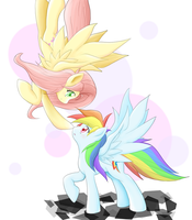 Rainbow dash and flutter shy by ragurimo