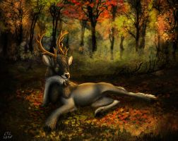 Welcome to my forest by Luno-LTL