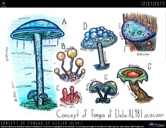 Concept of Fungus of Elelix XL481 by Unialien