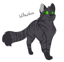 [100 WARRIOR CATS CHALLENGE] #15 - Willowshine by toboe5tails