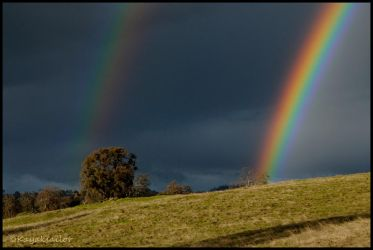 Double Bow by kayaksailor