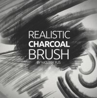 Realistic Charcoal Brush by WojtekFus