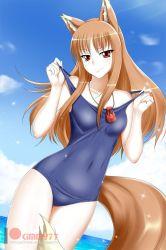 Spice and Wolf: Holo by kimmy77