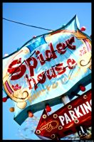 Spider House by T-WestPhotography