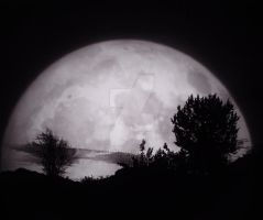 In the Light of the Moon by RCAmbriz