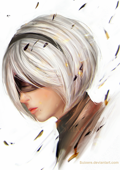 2B by Suixere