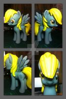 Design a Pony Derpy Hooves by BazSg