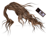 painted hair png 04 by erool