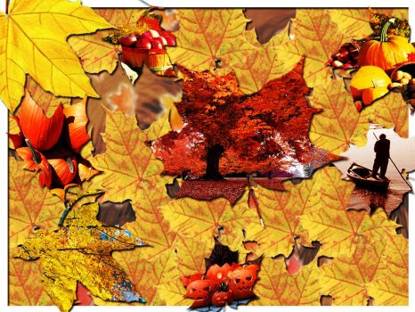 Autumn Leaves by Nobiy