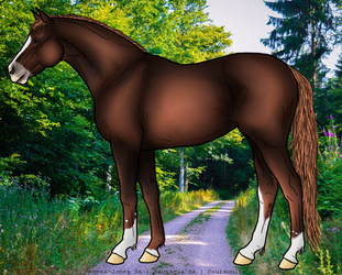 Example horse 2 by Coulsonite