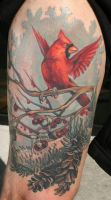winter cardinal by Phedre1985