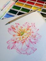 New water colours! by Heliocyan