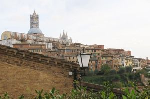 Siena by ShipperTrish