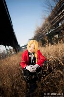 Full Metal Alchemist - 03 by shiroang