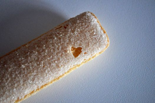 Love Biscuit? by Kai--Photography