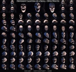 Different Lighting of a Skull - Open Mouth by AshenCreative