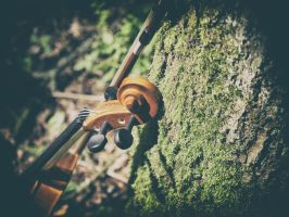 Violin in the woods 2 by Inilein