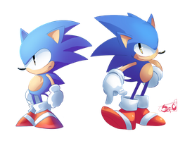 Sonics the Hedgehogs by StriCNYN3