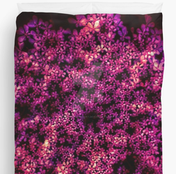 Queen Anne's Lace in Red Duvet by okhismakingart